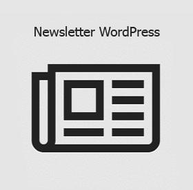 Crear un newsletter con wordpress